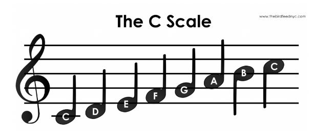 C Chord on Guitar: History, Chord Shapes, Major Scale, Songs etc