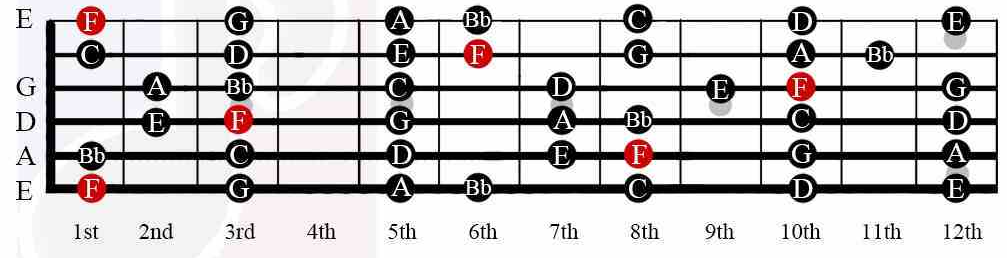 F Chord on Guitar: History, Relevance, Chord Shapes, Major Scale ...